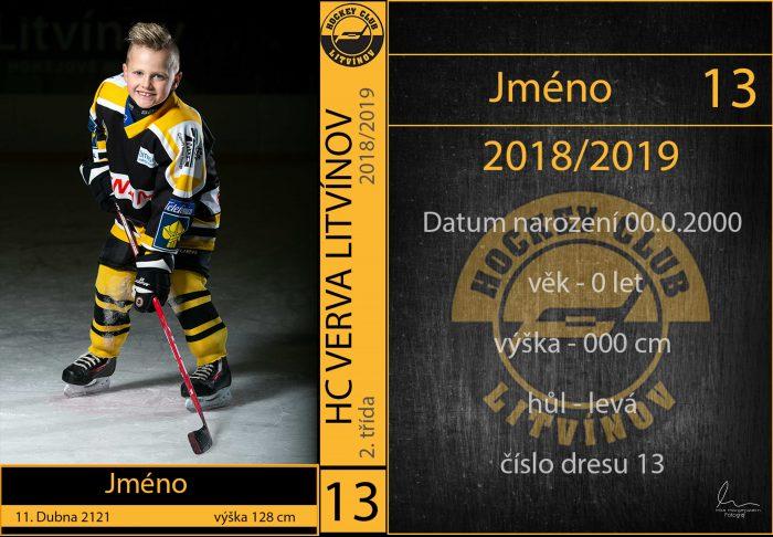 Focení HC Litvínov hokejové kartičky